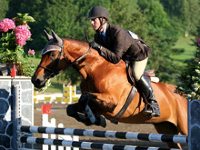 Ashbrooke Equestrian Center Visit Aiken Sc