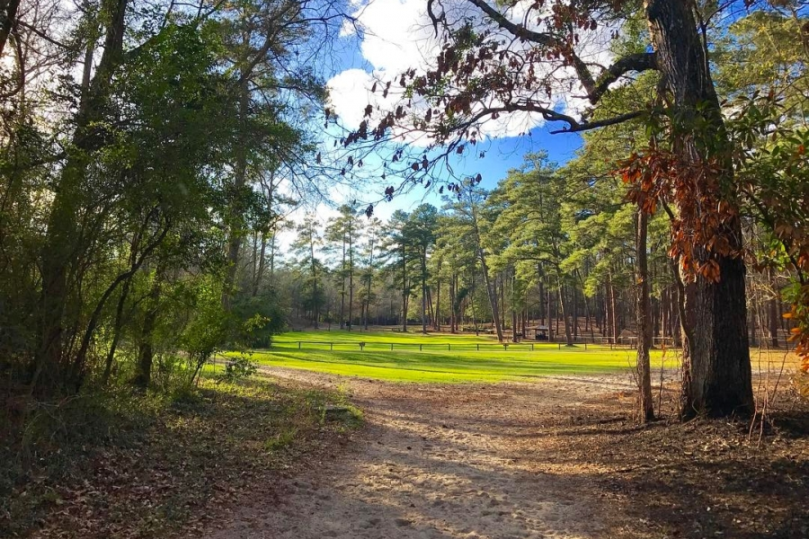 11 incredible strolls in Aiken to get your daily 10,000 steps