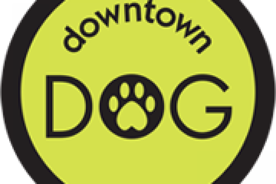 Downtown Dog Comes to Aiken