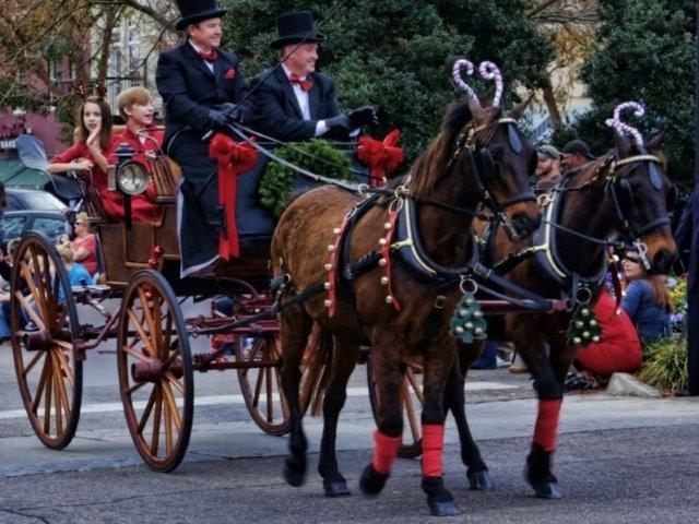 Carriage Rides (Friday from 5-8 p.m./ Saturday from 2-5 p.m.)