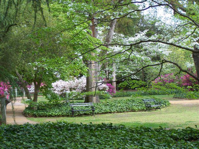 Hopelands Gardens Visit Aiken Sc